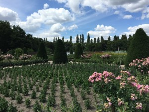The Loire Valley view from the garden